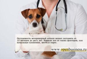 Бизнес-план ветеринарной аптеки