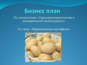 Скачать бизнес-план картофеля