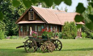 Какой бизнес можно открыть в деревне: 10 оригинальных идей