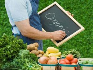 Бизнес на селе: 4 идеи и реальный пример
