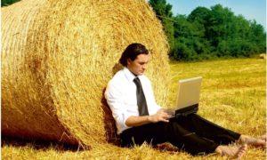 Бизнес в деревне: 12 свежих идей