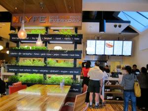 Бизнес-план кафе здорового питания